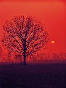 a-romantic-sunset-1146715-m