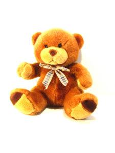 teddy-1406087 copia